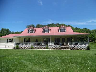 Greenup County Single Family Home For Sale: 2819 Brushy Creek Road