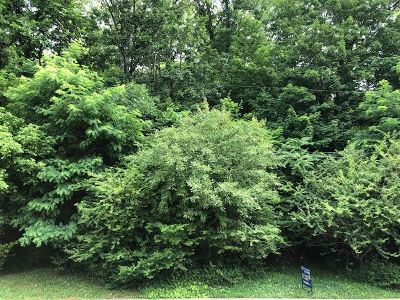 Ashland Residential Lots & Land For Sale: 2701 Forest Avenue