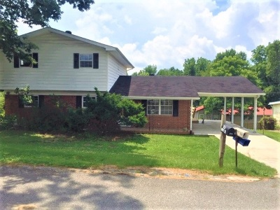 Carter County Single Family Home For Sale: 1113 Kristy Drive