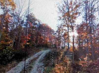 Carter County Residential Lots & Land For Sale: 243 Lark Spur