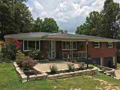 Lawrence County Single Family Home For Sale: 1054 County Road 105