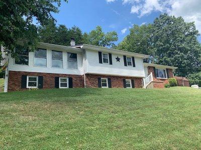 Carter County Single Family Home For Sale: 712 Rattlesnake Ridge