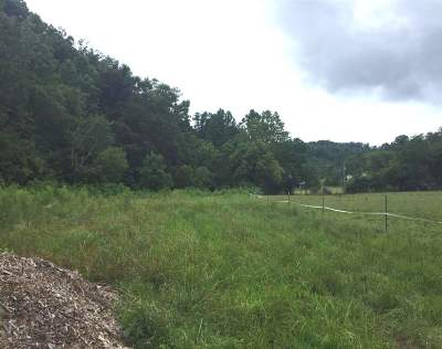 Lawrence County Residential Lots & Land For Sale: 46 Long Fork Road