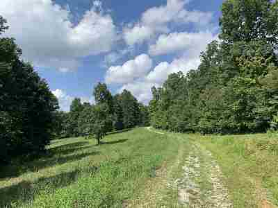 Ashland Residential Lots & Land Active-New: View Side Lane
