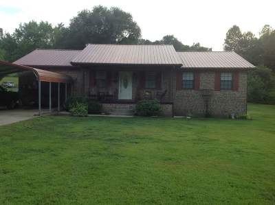 Greenup County Single Family Home For Sale: 28 Campbell Cemetery Road