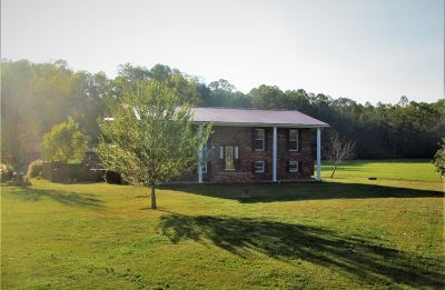 Catlettsburg Single Family Home For Sale: 17333 Big Run Trace