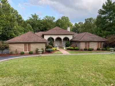 Ashland Single Family Home For Sale: 319 Bellefonte Drive