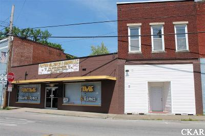 Commercial For Sale: 203 Main Street