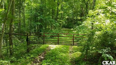 Casey County Farm For Sale: 1000 Patsy Riffe Rd