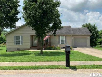Boyle County, Casey County, Garrard County, Lincoln County, Pulaski County, Rockcastle County Single Family Home For Sale: 33 Logans Woods Drive