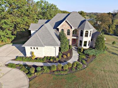 Simpsonville Single Family Home For Sale: 300 Bellefonte Ct