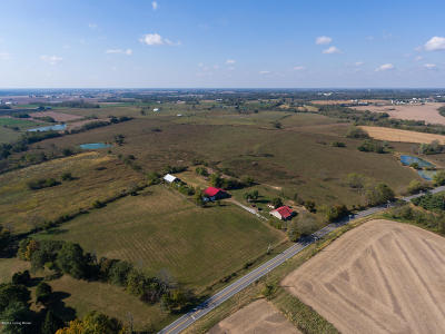 Henry County Farm For Sale: 4355 Castle Hwy