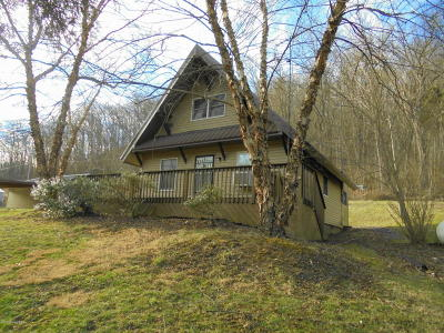 Single Family Home For Sale: 2904 Highway 55