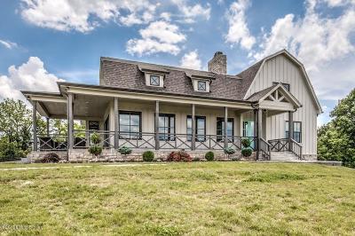 Simpsonville Single Family Home For Sale: 98 Chablis Premier Cir