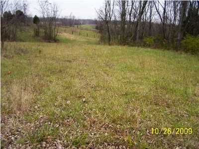 Henry County Residential Lots & Land For Sale: Silverview Ct #C