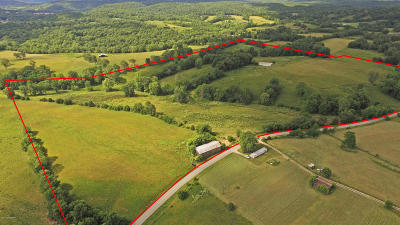 Henry County Residential Lots & Land For Sale: 7042 Gest Rd
