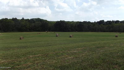Henry County Residential Lots & Land For Sale: Lake Jericho Rd