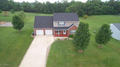 Elizabethtown Single Family Home For Sale: 234 Beasley Blvd