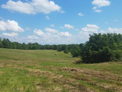 Taylorsville Residential Lots & Land For Sale: 1750 Townhill Rd