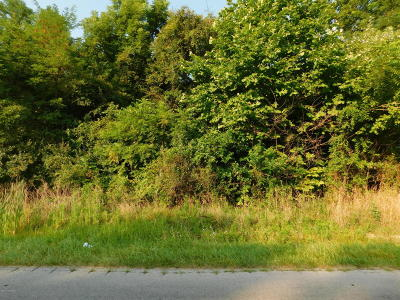Leitchfield Residential Lots & Land For Sale: Lilac Rd