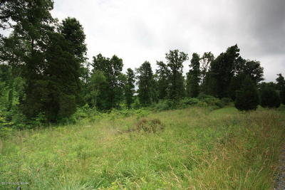 Leitchfield Residential Lots & Land For Sale: Lot 16 Grant Ridge Rd