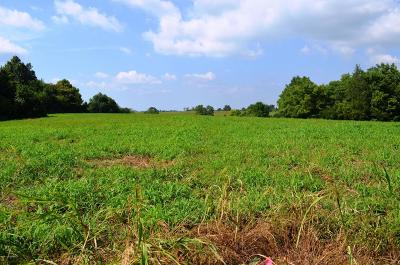 Henry County Residential Lots & Land For Sale: Lot B Overlook Terrace
