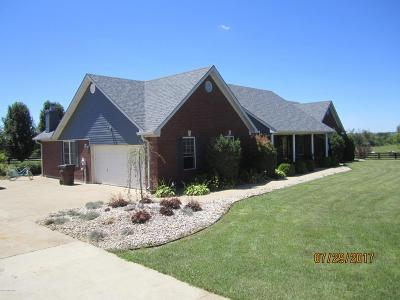 Henry County Single Family Home For Sale: 725 Sweeney Ln