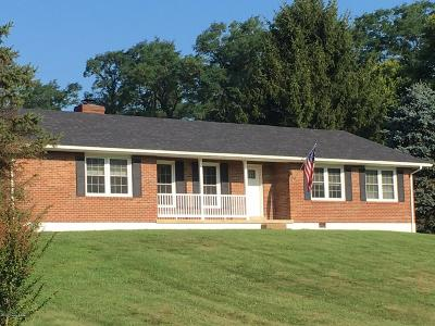 Henry County Single Family Home For Sale: 1852 Lake Rd
