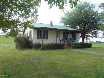 Clarkson Single Family Home For Sale: 617 St. Anthony Rd
