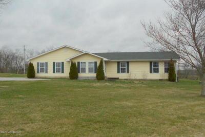Leitchfield Single Family Home For Sale: 909 Beaver Dam Creek Rd