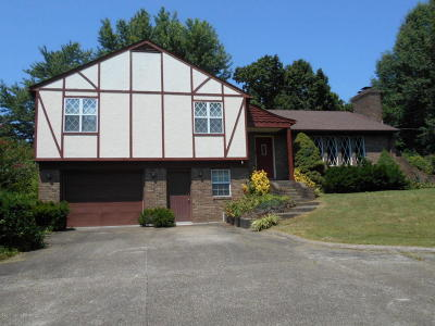 Leitchfield Single Family Home For Sale: 510 Wilson Dr