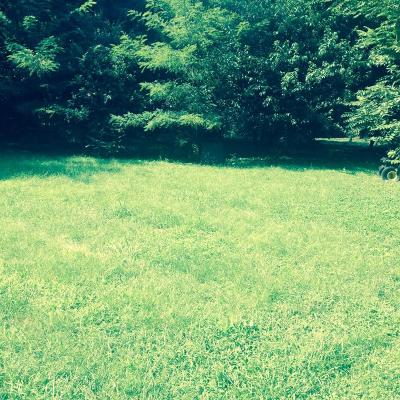 Bardstown Residential Lots & Land For Sale: Blueberry St