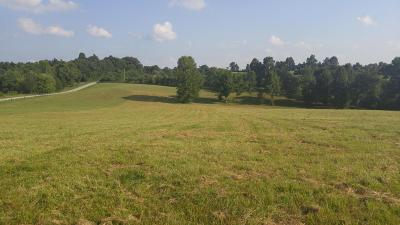 Caneyville Residential Lots & Land For Sale: Bryant Ridge Rd