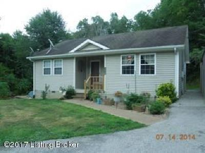 Caneyville Single Family Home For Sale: 356 Bryant Ridge Rd