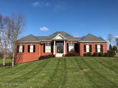 Shelby County Single Family Home For Sale: 1024 Windsor Dr