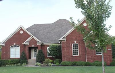 Louisville Single Family Home For Sale: 10431 Vista Hills Blvd