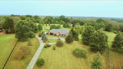 Shelby County Single Family Home For Sale: 387 Old Stone Rd