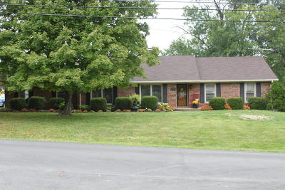 Simpsonville Single Family Home For Sale: 221 Old Veechdale Rd