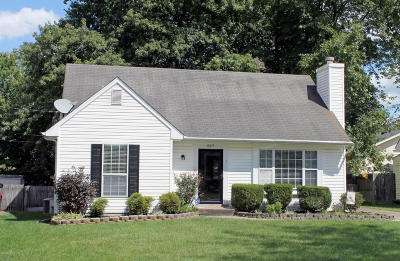 Lyndon Single Family Home For Sale: 527 Fountain Ave