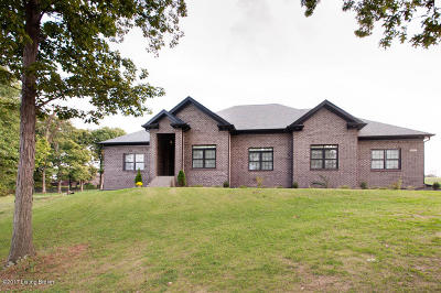 Shepherdsville Single Family Home For Sale: 497 E Millwater Falls
