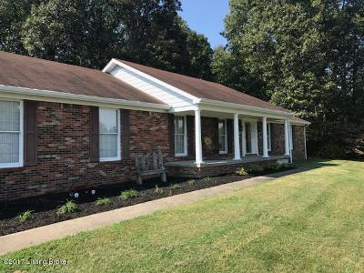 Elizabethtown Single Family Home For Sale: 399 Ford Hwy