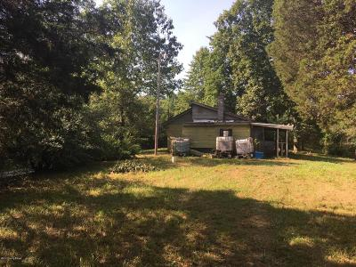 Leitchfield Single Family Home For Sale: 219 Indian Hills Ln
