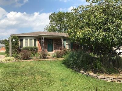 Henry County Single Family Home For Sale: 1044 New Castle Ct