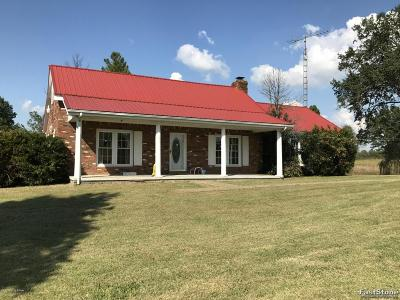 Caneyville Single Family Home For Sale: 3541 Wilson Church Rd