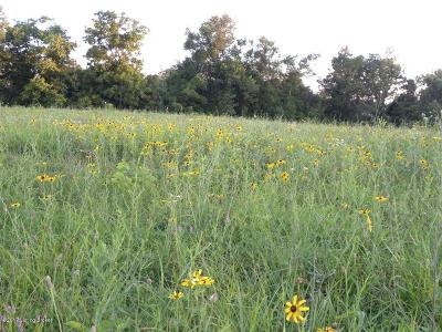 Spencer County Residential Lots & Land For Sale: LOT 72 Fox Lair Blvd