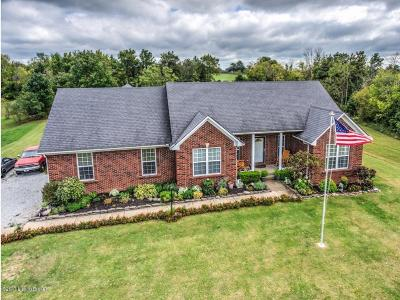 Henry County Single Family Home For Sale: 194 Silverview Rd