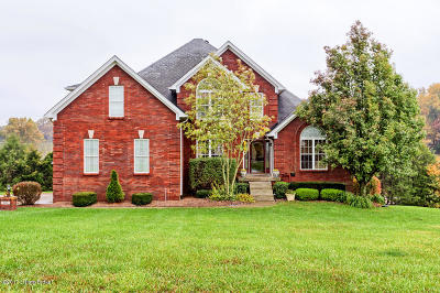 Taylorsville Single Family Home For Sale: 747 Locust Grove Dr