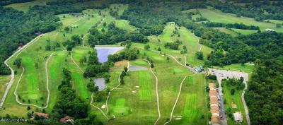 Spencer County Residential Lots & Land For Sale: 245 Tanglewood Ct