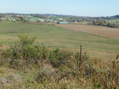 Leitchfield Residential Lots & Land For Sale: 4699 Owensboro Rd