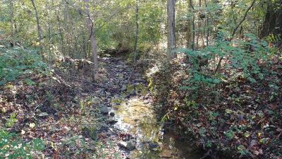 Bullitt County Residential Lots & Land For Sale: Lot 13 Wood Valley Ln